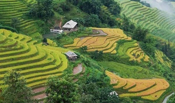 Khu vực huyện Hoàng Su Phì