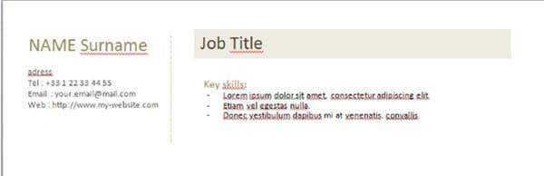 Ví dụ về phần mở đầu của CV bằng tiếng Anh