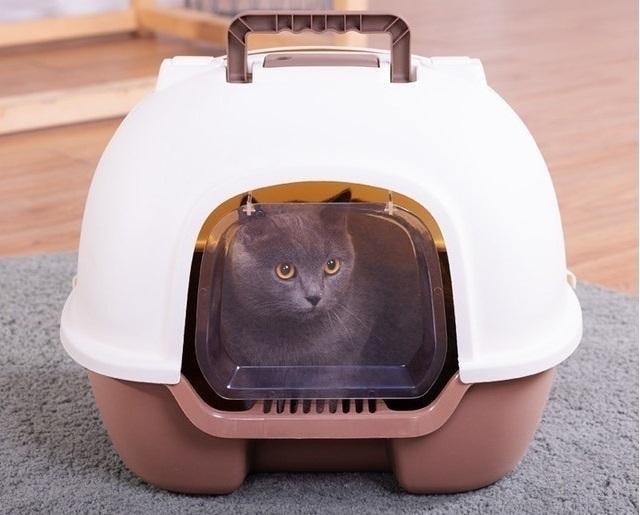OEM - Nhà Vệ Sinh Mèo Có Cửa Mở Sau