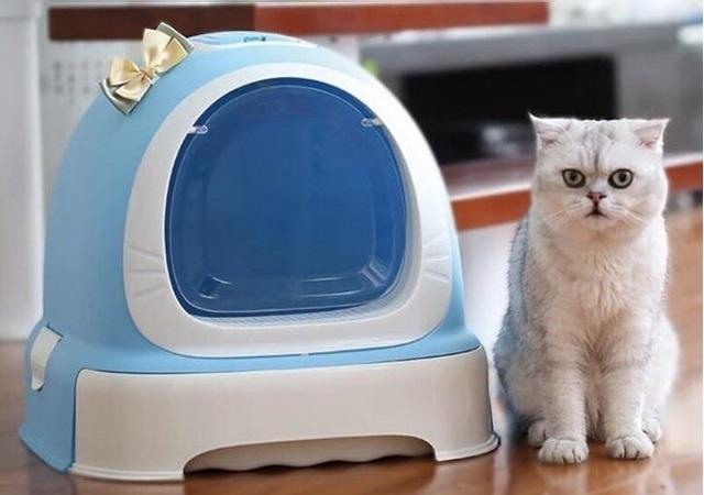 Makar - Nhà Vệ Sinh Mèo Có Nơ