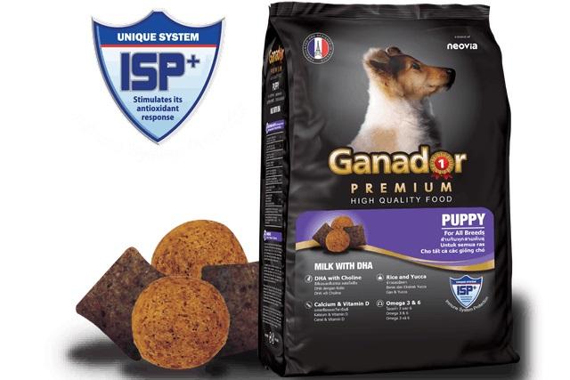 Ganador - Thức Ăn cho Chó Con Vị Sữa và DHA