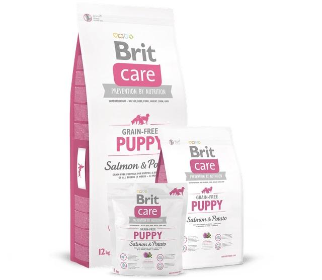 Brit - VAFO PRAHA - Thức Ăn cho Chó Con Grain-free Cá Hồi và Khoai Tây