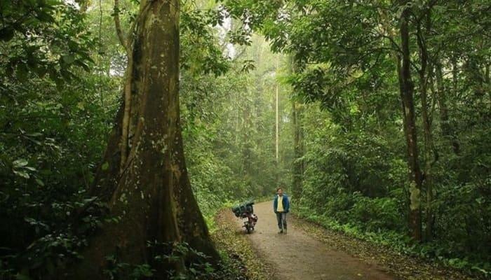 Top 10 Vườn Quốc Gia Đẹp Nhất Việt Nam